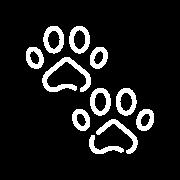 pawprints-2